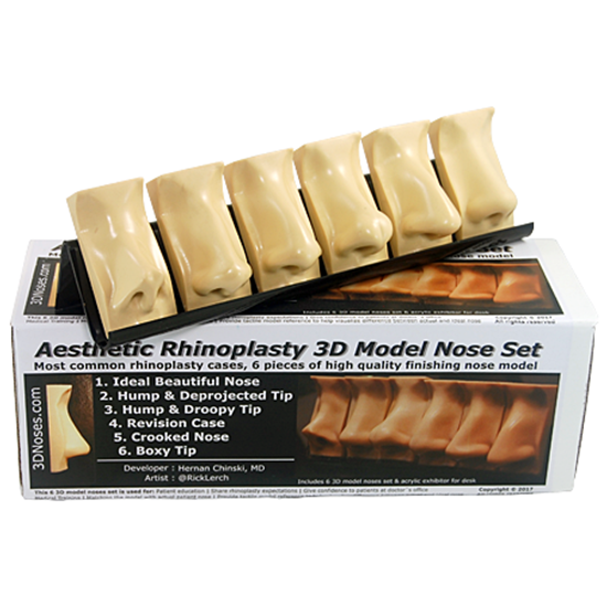 Picture of Aesthetic Rhinoplasty 3D Model Nose Set
