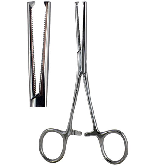 Kocher Artery Forceps
